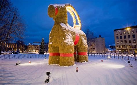 Christmas traditions in Sweden: the Goat, a real celebrity