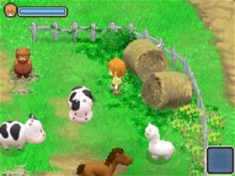 Harvest Moon: The Tale of Two Towns for Nintendo DS | GameStop
