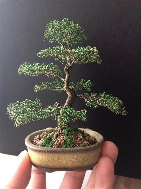 Wire Tree Art of Bonsai Trees Means Your Plant Will Live