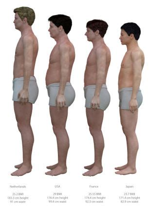 Average BMI: Artist compares sizes of men in various